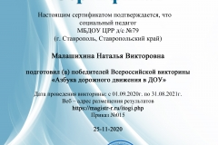 Сертификат-Магистр05